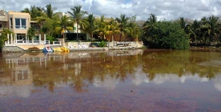 Denuncian daños en la laguna Kantena por arrecifes artificiales del hotel Catalonia