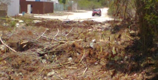 Garantizan cuidado de cenote ubicado en el fraccionamiento Cataluña