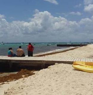 Analiza Profepa afectación de la zona de playa por el hotel coco beach