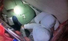 Patrulla Fronteriza rescata a 11 inmigrantes ocultos en camión de cebollas